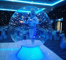 snow globe ents (gravity)