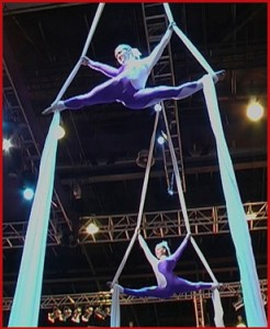 aerial silks duo for events