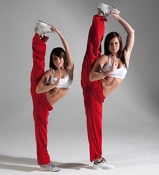 Martial arts show